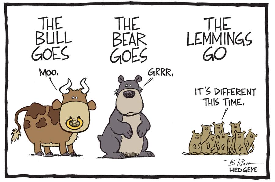Bull_goes____07_11_2014_large